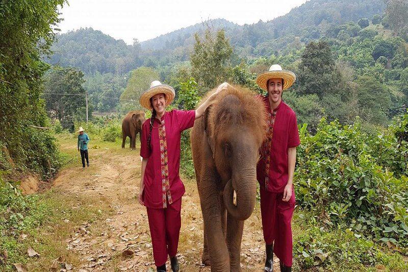 elephant tour chiang mai_serene boutique elephant care_14