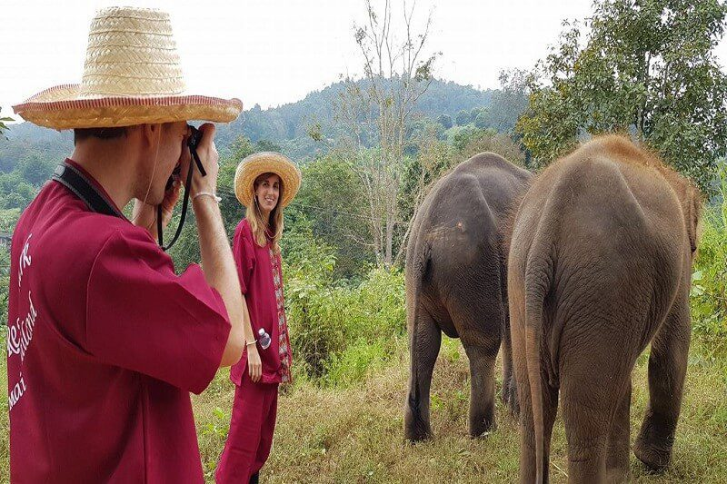 elephant tour chiang mai_serene boutique elephant care_15