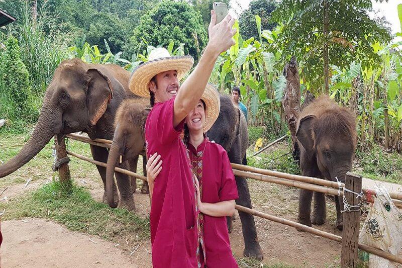 elephant tour chiang mai_serene boutique elephant care_5
