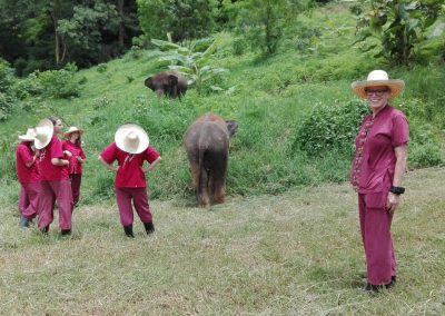half day elephant sanctuary chiang mai