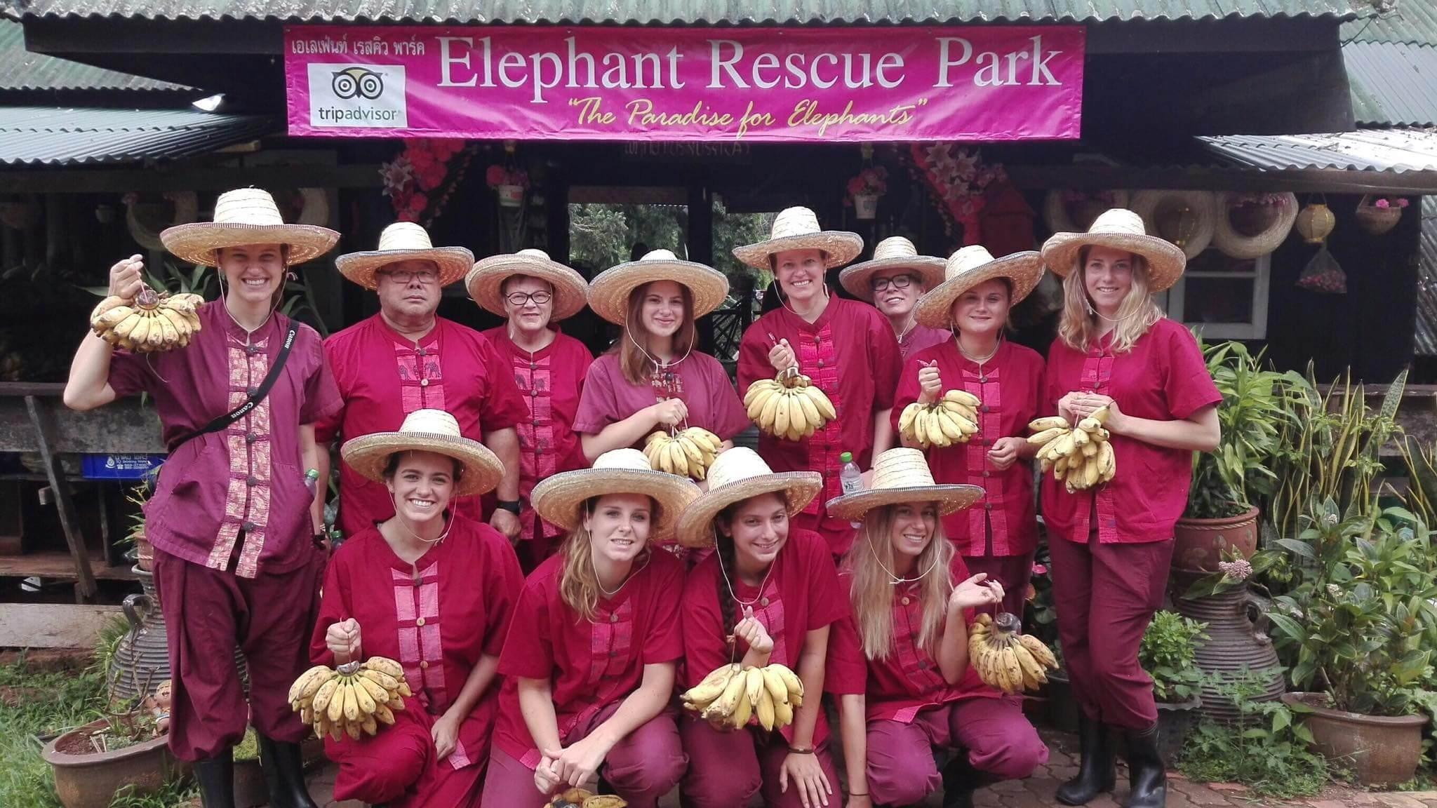 half day elephant sanctuary chiang mai_1