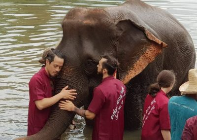 half day elephant sanctuary chiang mai_13