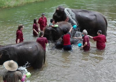 half day elephant sanctuary chiang mai_4