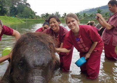 half day elephant sanctuary chiang mai_8