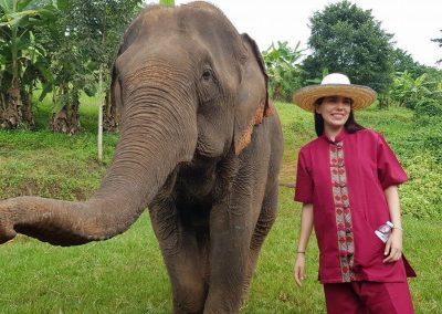 half day elephant sanctuary chiang mai_9