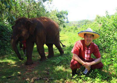 Elephant Rescue Park_customer_chilling