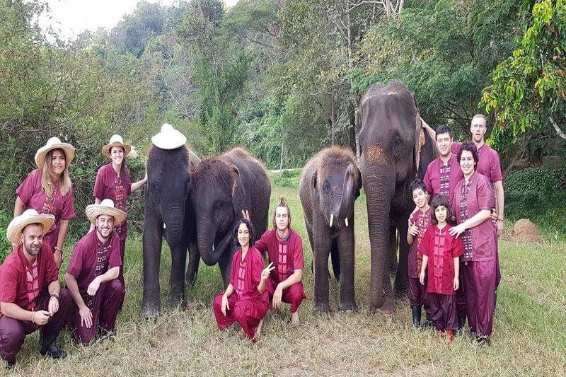 Overnight Elephant Care_1