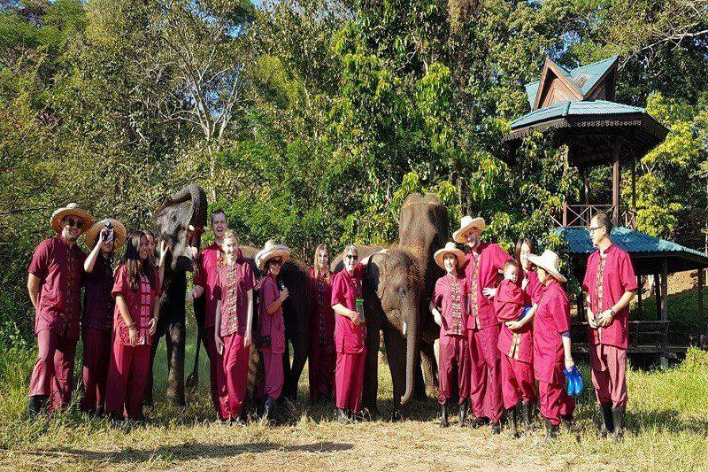 Overnight Elephant Care_13