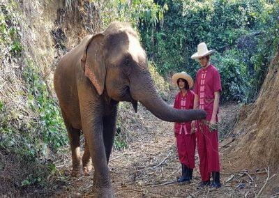 Overnight Elephant Care_3